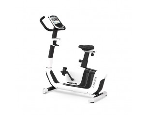 Bicicleta Upright Horizon Comfort 5