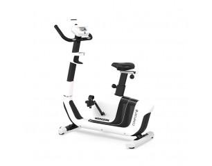 Bicicleta Upright Horizon Comfort 3